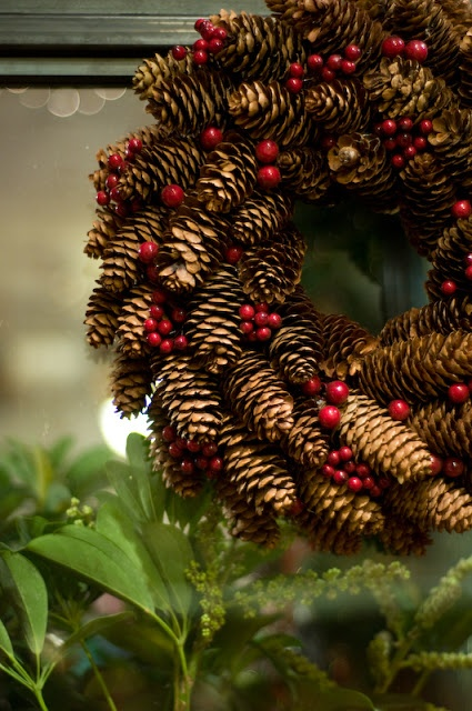 Pinecones are free around here. As are wild rose hips