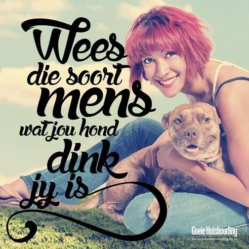Wees soos... #Afrikaans #Rules2LiveBy #hond __GoeieHuishouding