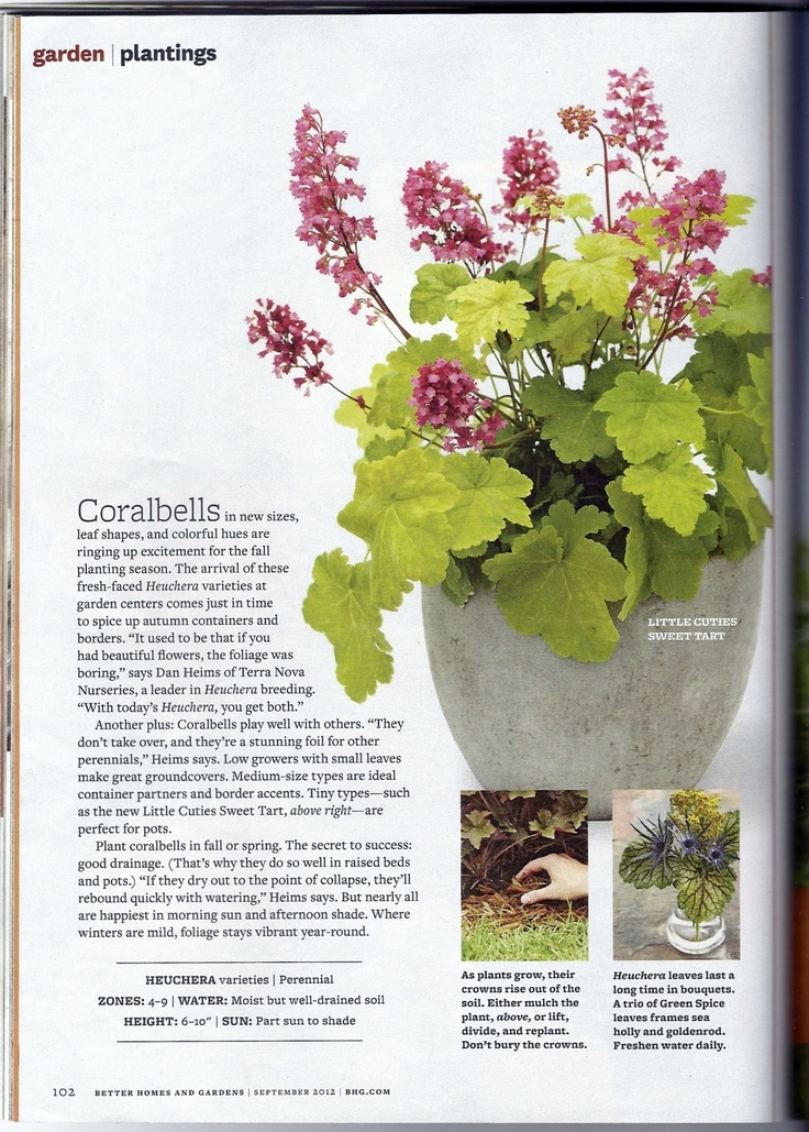 Better Homes And Gardens Magazine Sept. 2012