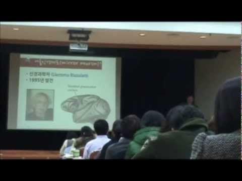 동작관찰훈련(action observation training), 거울신경세포(Mirror neuron)