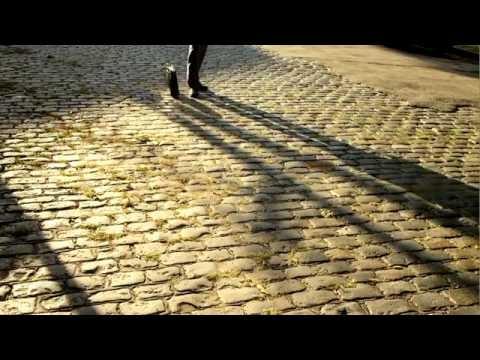 Luminaris, a short film in stop-motion by Juan Pablo Zaramella.