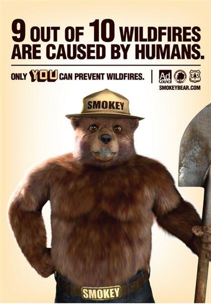 Smokey The Bear Psa the ad council