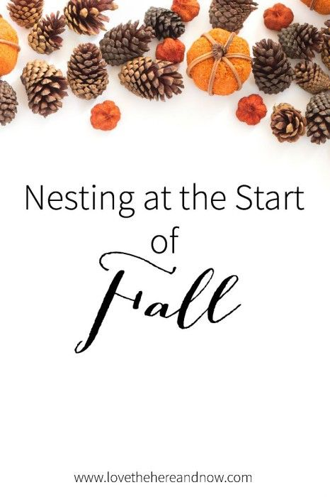 Nesting at the Start of Fall