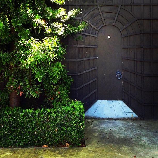 Inner City Backyard Ideas : 1000+ images about Gardens and garden Design on Pinterest  Gardens