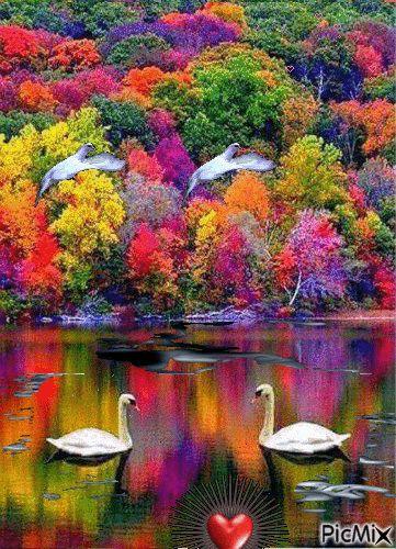 picmix.com colors of autumn gifs | World of Many Colors - PicMix