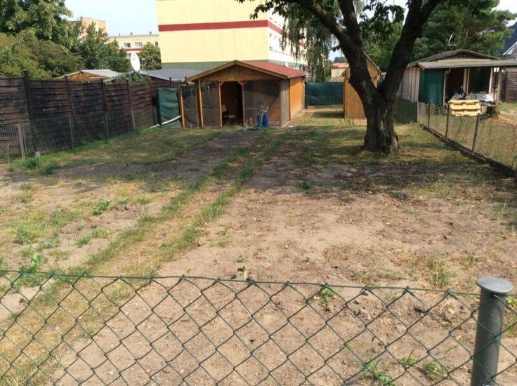 Wir Haben Einen Kleinen Garten In Fehrbellin Abzugeben Br Wir Mochten Unseren Kleingarten Der Kleingarten In Fehrbell Terassenideen Kleiner Garten Garten