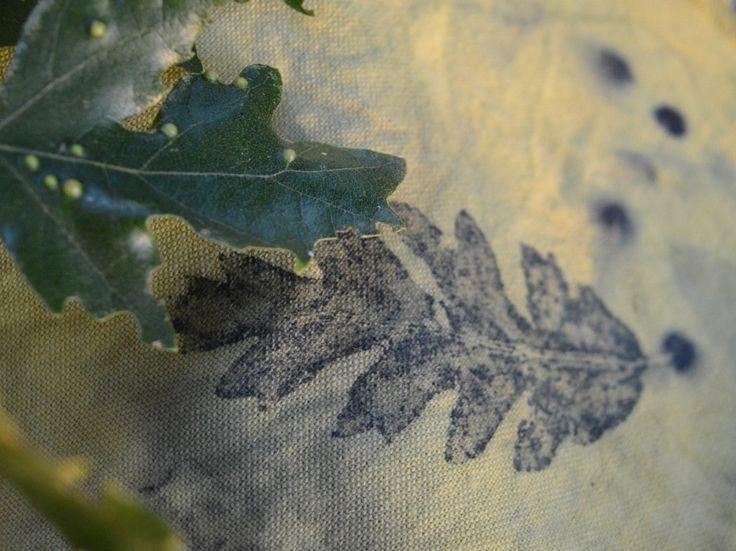 In anteprima alcuni disegni di tessuti per i nuovi cuscini d'autunno; una collezione che disegna impronte di foglie di alberi come l'acero campestre, il pioppo bianco, la rosa canina, il rovo e la quercia. - I cuscini esposti al Festival del Verde e del Paesaggio a Roma -  Cuscini esposti nel Eco...