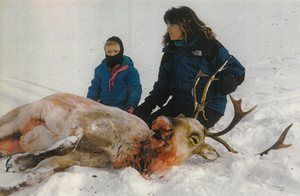 Sarah Palin poses with one of her daughters and a caribou she shot in Alaska.