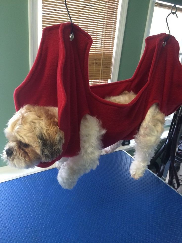 dog grooming hammock - can diy a version for mobility support