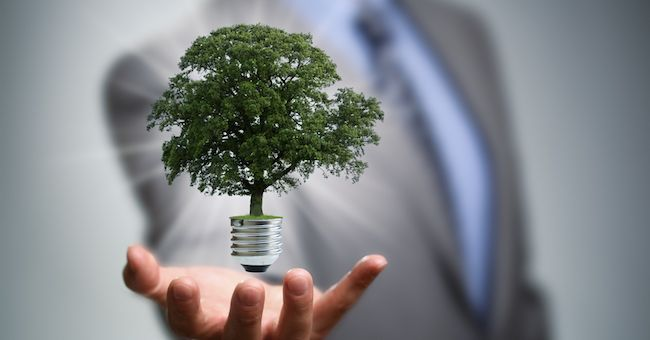 Eco-agenda ambientalista al Governo: 16 temi per rilanciare l'economia