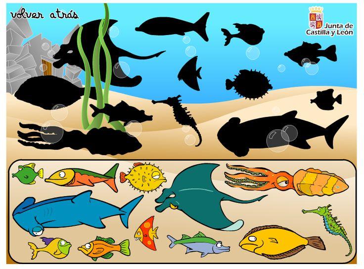 http://www.educa.jcyl.es/educacyl/cm/gallery/Recursos%20Infinity/juegos_jcyl/pasatiempos_pri/juegosverano/sombras/sombras_peces.html
