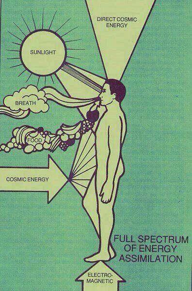 Assimilação energética! Através da Energia Cósmica, Telúrica (Magnética), Solar, Alimentar e trocada através da respiração!!