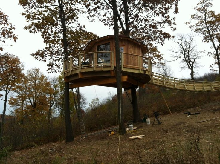 themohicancabinscom kevin mooney from treehouse masters interior