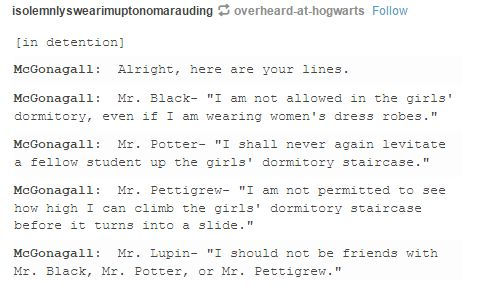 the marauders and mcgonagall