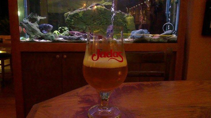 Judas - Brouwerij Alken-Maes- Banana and tropical fruits. Sweet but fresh enough to enjoy it! #beeroclock #Judas