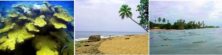 Steps Beach | Rincon Puerto Rico