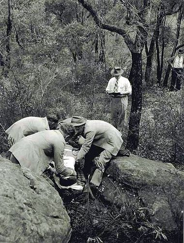 Interstate Railway Ambulance Corp competition at Lane Cove National Park. Dated: 25/10/1956.  Digital ID: 17420_a014_a014000126.  Rights: www.records.nsw.gov.au/about-us/rights-and-permissions