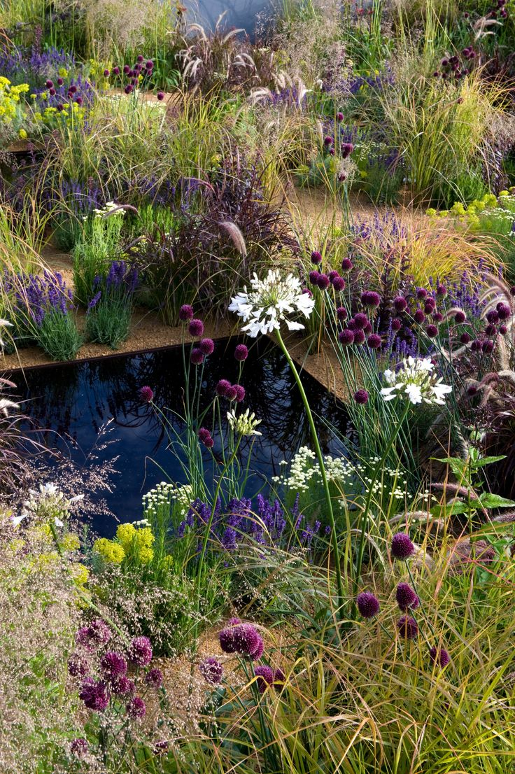 The One Show Garden by Alexandra Noble. Photo Credit: Marcus Harpur