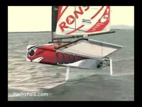 Moth Sailing