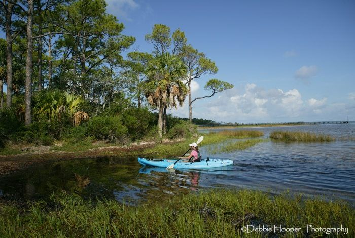 220 best florida images on pinterest family activity for Cape san blas fishing