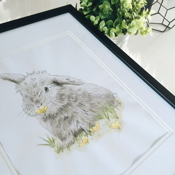 ✖ Fluffy Friend✖  Watercolour and fine liner Giclee fine art print (unframed) Limited Edition of 100  ------------------ Artwork Size 148 x 210mm A5 210 x 297mm A4 297 x420mm A3 420 x 595mm A2  This illustration is a print of the original artwork. A fine art print onto 310gsm archival quality cotton paper.  Signed and individually numbered to ensure authenticity.  Print comes unframed and packaged with a great deal of care for shipping to your home.  T...