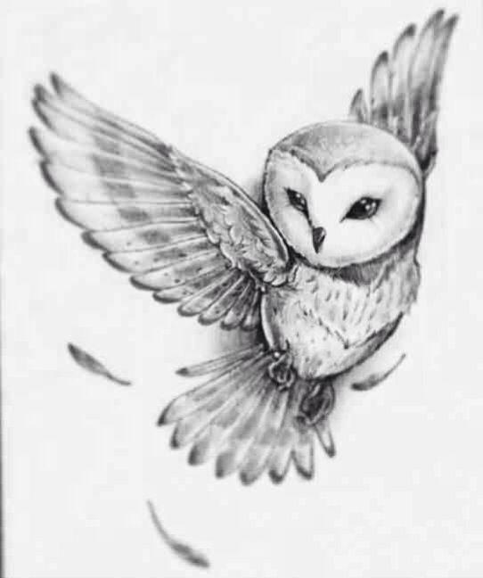 Αποτέλεσμα εικόνας για owl tattoo drawing