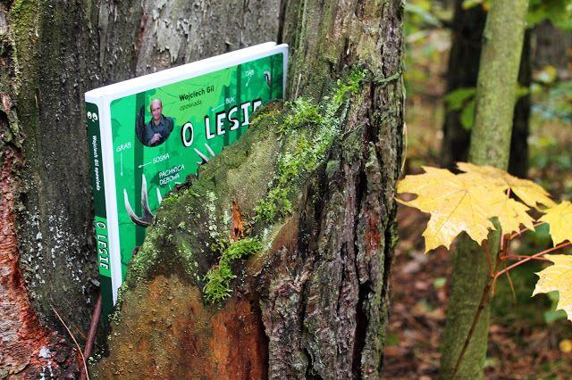 Książka, Las, http://makiwgiverny.blogspot.com/2015/10/wojciech-gil-opowiada-o-lesie.html