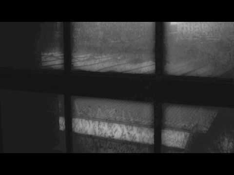 Max Richter-I Was Just Thinking