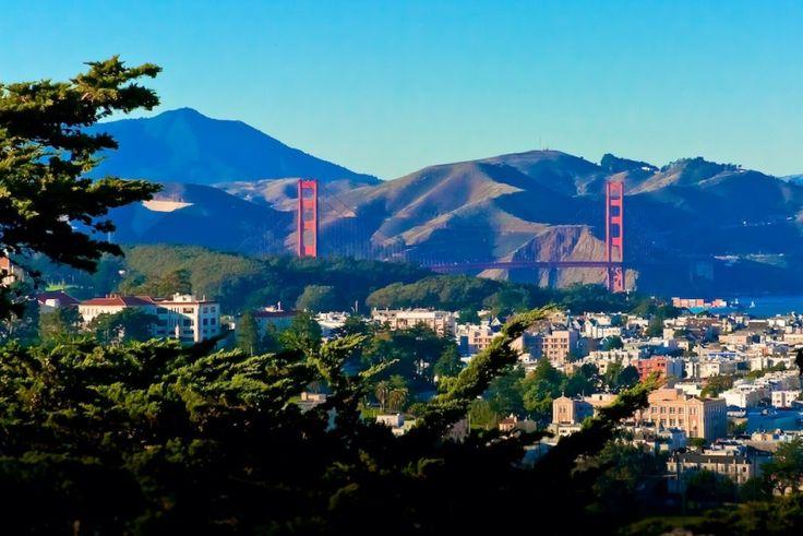 Buena Vista guide, moving to San Francisco | StreetAdvisor