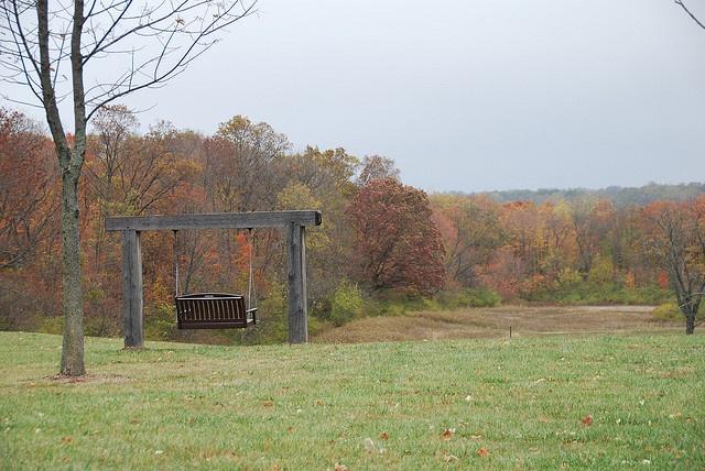 Taylorsville MetroPark.  Great swing in the fall.