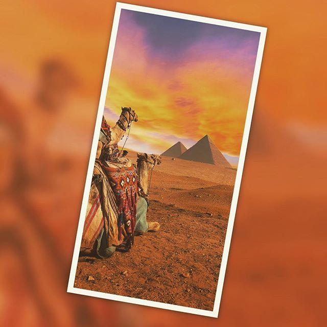 """#egipto🇪🇬 """"Pirámides de Giza Situadas en la meseta de Giza a 18 kilómetros de El Cairo se encuentran las Pirámides, los monumentos más conocidos de Egipto y unos de los más antiguos del mundo. La construcción de las grandes pirámides comenzó sobre el año 2500 a.C. Hay 3 pirámides principales en Giza: Keops, Kefrén y Micerinos."""" #by disfrutaegipto.com #trip #traveler #travelblog #travelpics #travelgram #travelguide #travellover #travelgoals #traveladdict #beautifulplaces #visitmyig…"""