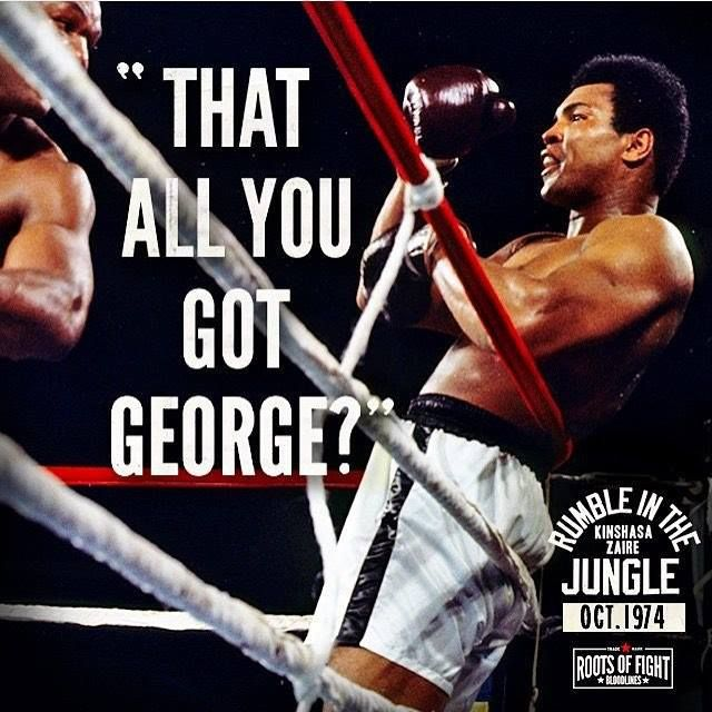 1444 best sports images on Pinterest Basketball, Basketball - best of boxing blueprint meaning