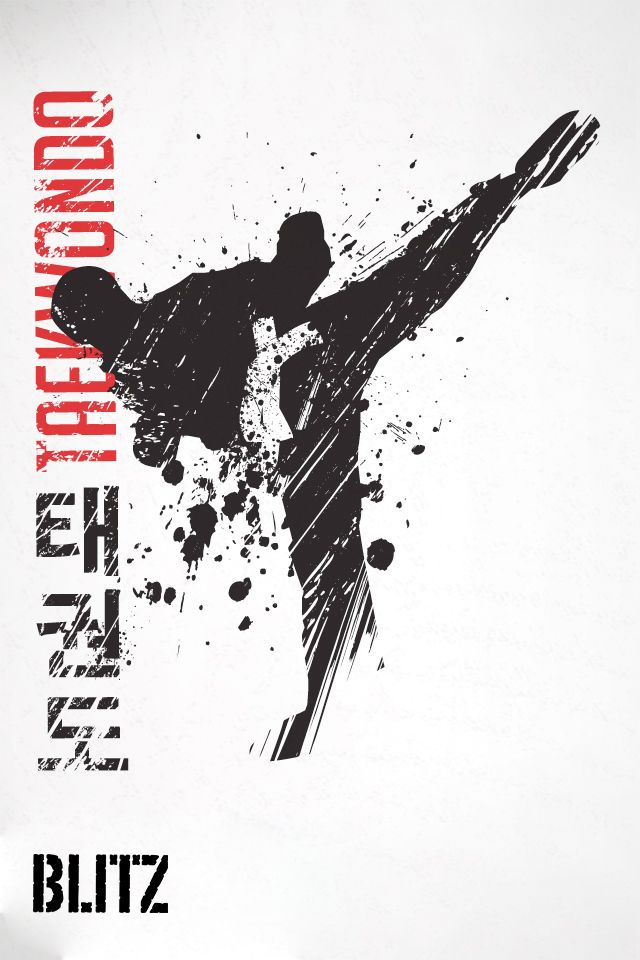 blitz taekwondo iphone wallpaper 960 x 640 martial