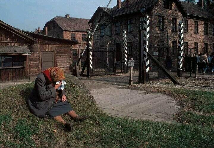 Auschwitz Memorial / 1981