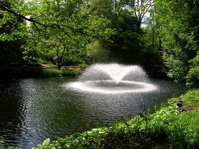 11 best images about pond fountains on pinterest lotus for Best pond fountains