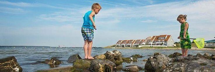Vakantiepark Landal Port Greve, met 575 bungalows, ligt direct aan het Zeeuwse Grevelingenmeer. Dat betekent wandelen op het strand, vliegeren, surfen, zeilen en natuurlijk zonnebaden.