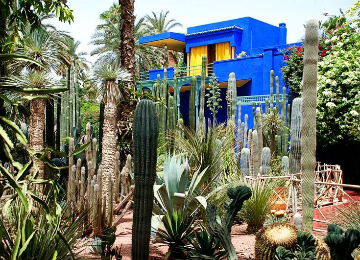 highlight jardin majorelle marrakech morocco by thuy vi gates peices of me. Black Bedroom Furniture Sets. Home Design Ideas