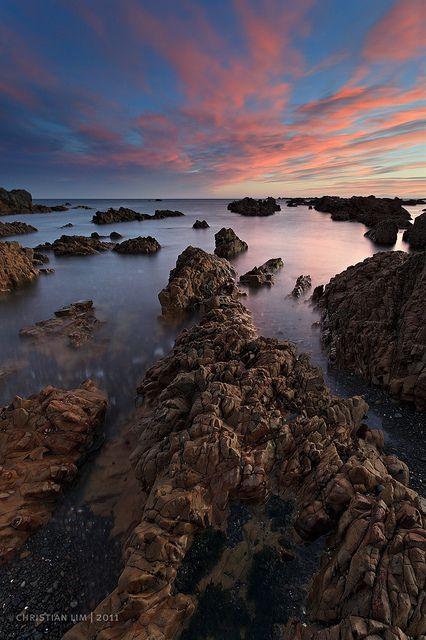 Breaker Bay   Wellington North Island, NZ