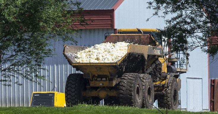 U.S. Ag Secretary Tom Vilsack has urged landfills to accept some of the birds killed by the virus