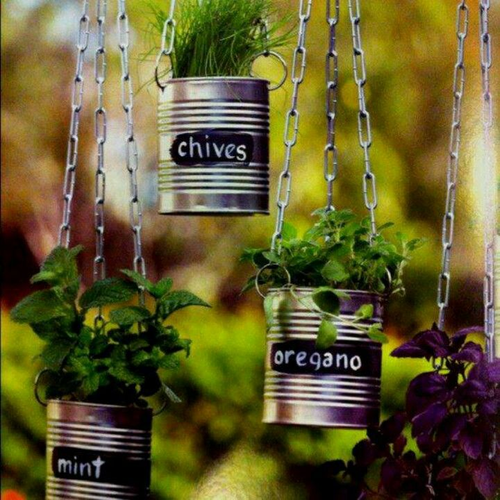 Create herb pots from old tin cans, add chalk board paint and labels to hang in garden