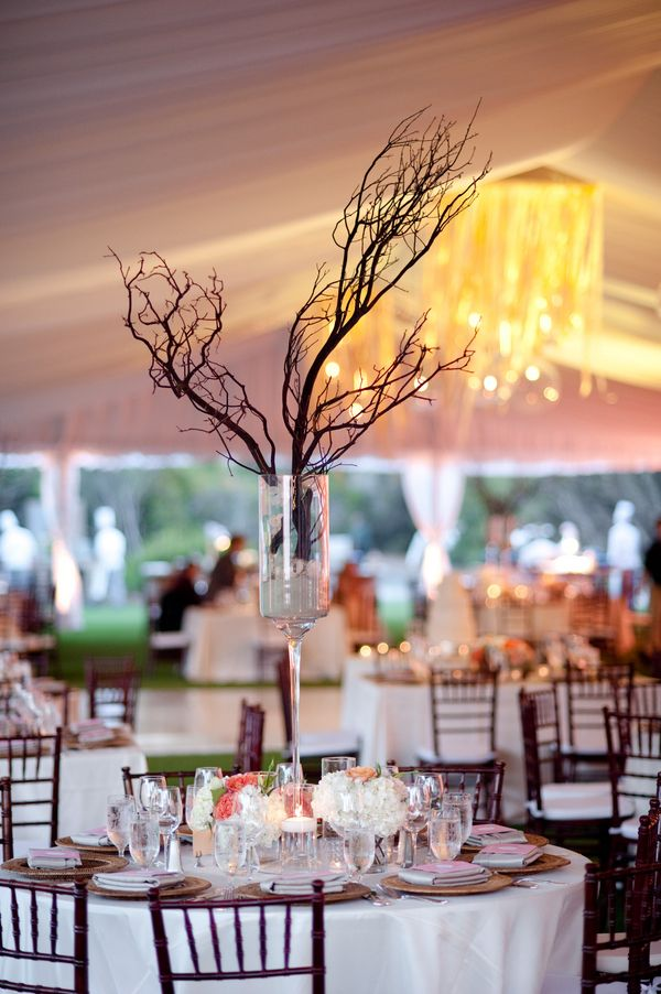 180 best images about branch wedding centerpieces on for Tall wedding centerpieces with branches