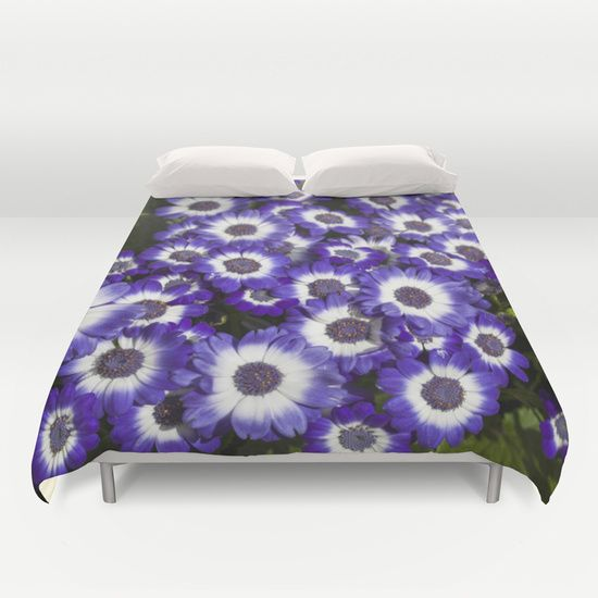 Cineraria Purple by Deborah Janke.  Available in other products