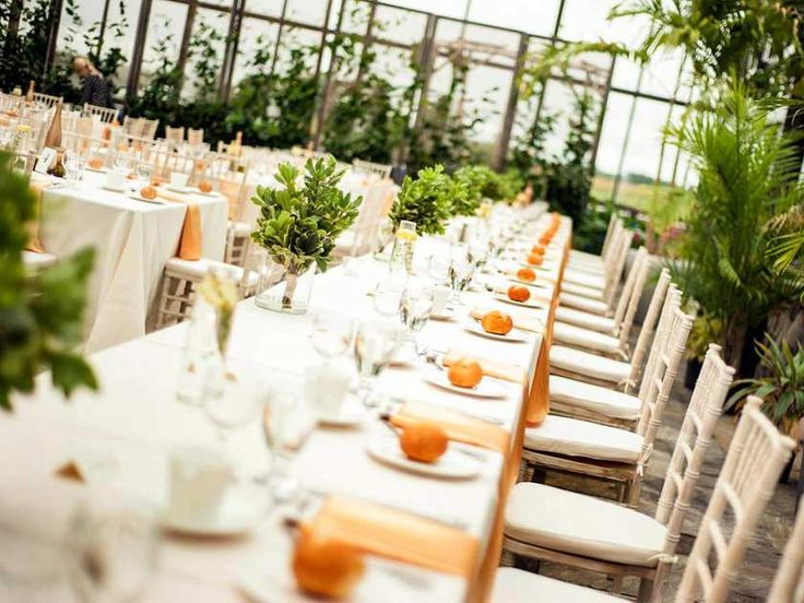 A tropical oasis is the setting for banquet dinners at Aquatopia in Carp, with its spectacular sunsets and palm trees.