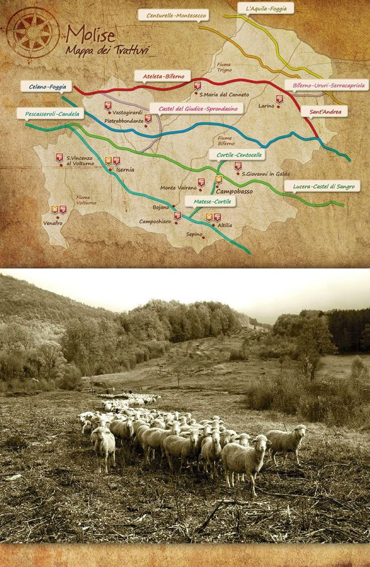 La storia dei tratturi e della transumanza è antichissima. Secondo Quinto Fabio Pittore (III sec. a.C.) i Romani scoprirono la ricchezza prodotta dalla pastorizia transumante quando vennero in contatto con i Sanniti, Facendone una delle attività più redditizie dell'Impero (pecus pecunia) http://molisebwineblog.blogspot.it/2014/09/laboratori-del-gusto-sulle-tracce-della-transumanza.html#1ssuv4vn.16256.pi#1skxa18a.81560.pi #molise #destinazionemolise #italy