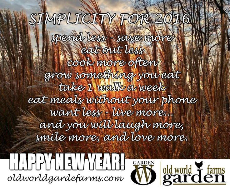 Quotes New Year 2016: 25+ Best Happy New Year Quotes On Pinterest