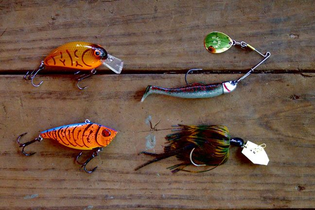 1000 images about everything about fishing on pinterest for Bass fishing baits
