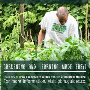Building Communities, One Garden At A Time