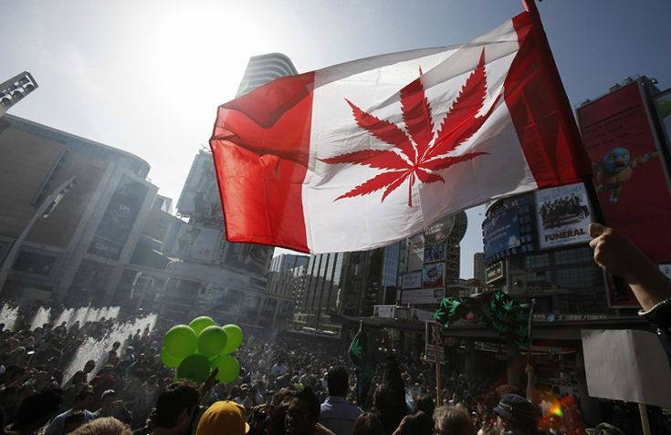 MPs Passed The Liberal Government's Bill to Legalize Cannabis