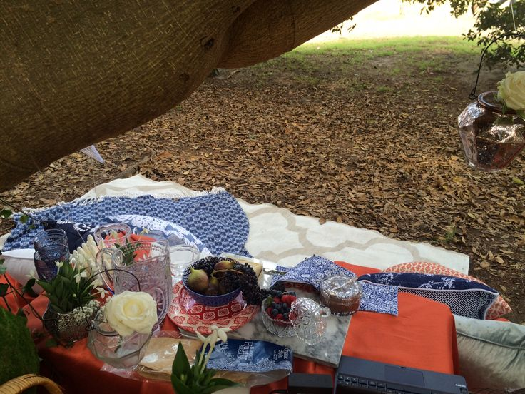 Under the Moreton Bay Fig