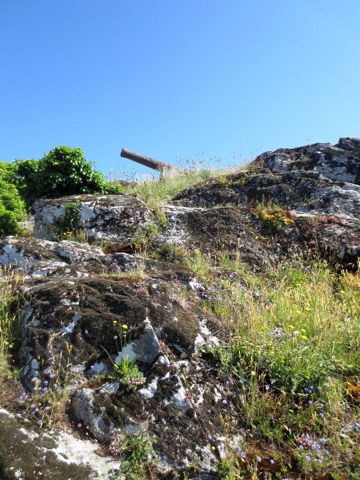 Le site du Rocher à La Roche-Bernard dans le Morbihan. Une photo canon ! (jeu de mot... enfin, on essaye)
